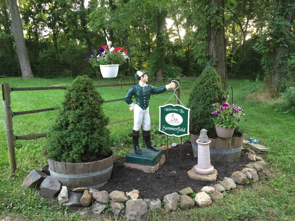 hunter_green_lawn_jockey
