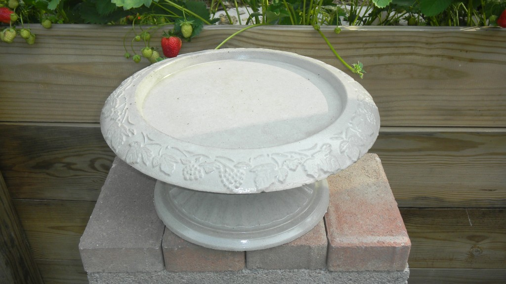 small bird bath